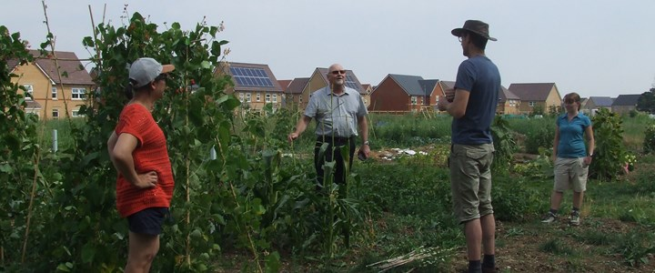 Grow-your-own community flourishes at first Northstowe allotments