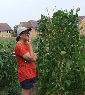 Cllr Sarah Cheung Johnson standing next to plants at an allotment